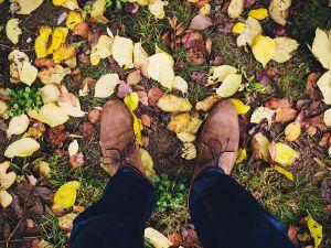 cura delle scarpe in camoscio